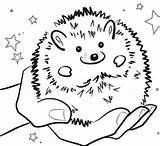 Hedgehog Coloring Igel Pet Staggering Inspirations Hedgehogs Bestcoloringpagesforkids Ausmalbilder Kostenlos Malvorlagen Ausdrucken Zum sketch template