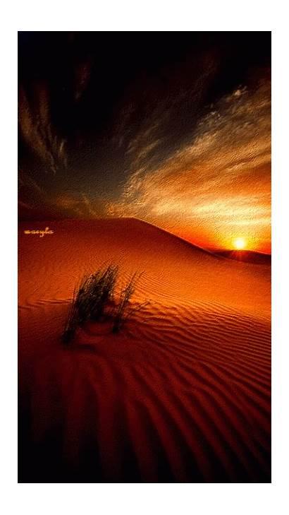 Desert Gifs Sunset Nature Landscape Sahara Scenery