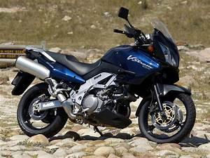 Suzuki V Strom 1000 Avis : tha trails suzuki dl 1000 v strom station bike ~ Nature-et-papiers.com Idées de Décoration