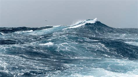 sustainable fishing msc marine stewardship council