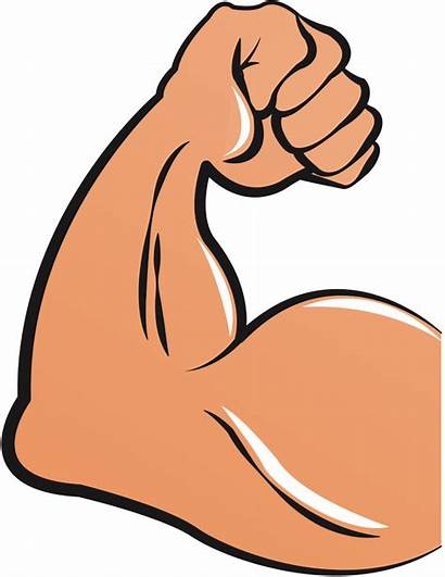 Muscle Clipart Arm Bicep Clip Strong Hand