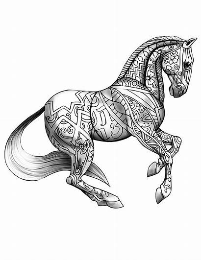 Coloring Adult Printable Books Horse Animal Shaded