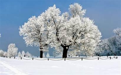 Winter Wallpapers Automotive Snow Nature Service