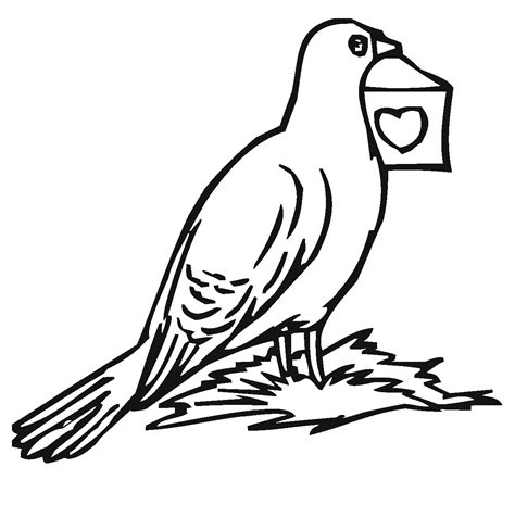Coloring Pages To Print by Free Printable Pigeon Coloring Pages For