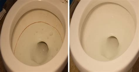 remove stains   toilet bowl