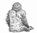 Gorilla Coloring Pages Grodd Animals Printable Night Getcoloringpages Cool Animal Jungle sketch template