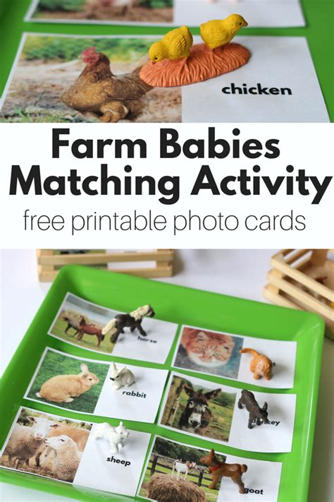 farm matching activity with free printables free 451 | 818d0a989c2f576963aa5e89ff92e759