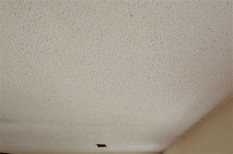 Scraping Popcorn Ceilings That Been Painted by 100 Scraping Popcorn Ceiling With Shop Vac Our Top
