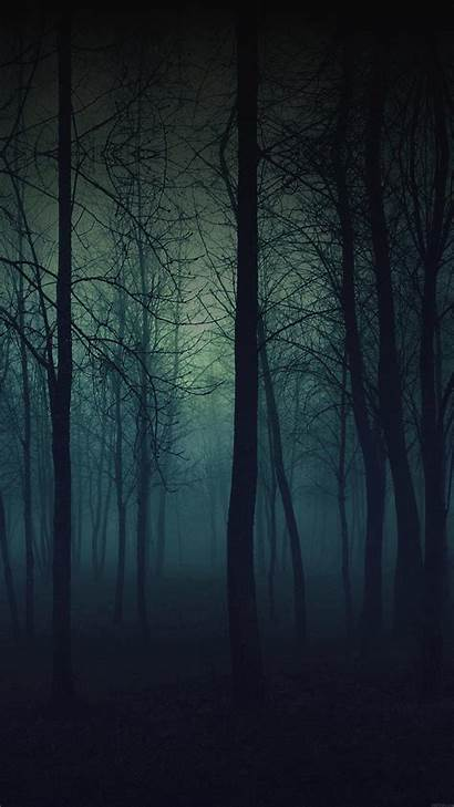 Eerie Forest Iphone Night Plus Nature Wallpapers