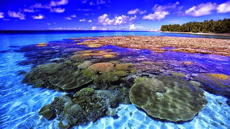 Sun And Moon Background Coral Reef Hd Wallpapers Earth Blog