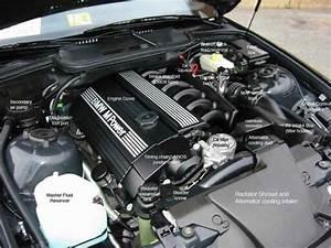 Bmw E36 M3 Engine