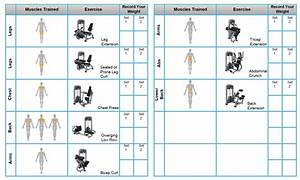 Planet Fitness 30 Minute Circuit Instructions
