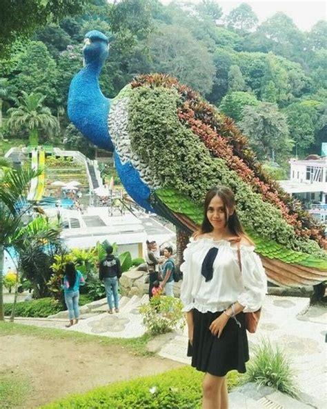 kebun bunga  wahana kawasan wisata batu selecta malang