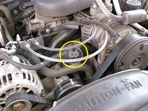 S10 Blazer Purge Solenoid Wiring Diagram 97 Chevy S10