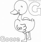 Goose Coloring Coloringfolder Printable Animal Flying Wild Goos sketch template