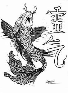 Chinese Carp Fish Drawing