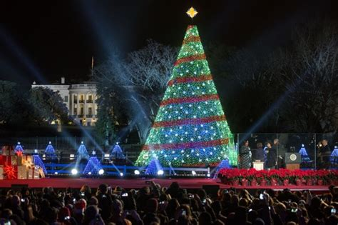 washington dc christmas lights dc insider toursour top picks holiday lights in