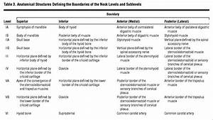 Neck Dissection Classification Update