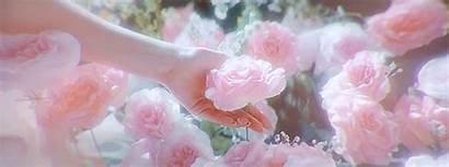 Pink Flowers Rose Umbrella Academy Flower Zero