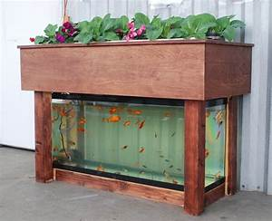 How To Build An Aquaponics System Step By Step At Home
