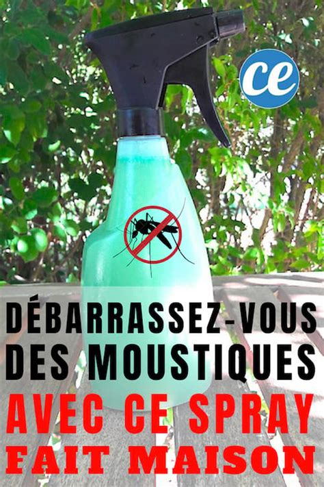Débarrassezvous Des Moustiques Dans Le Jardin Avec Ce