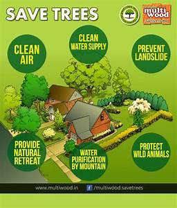 short essay on save trees