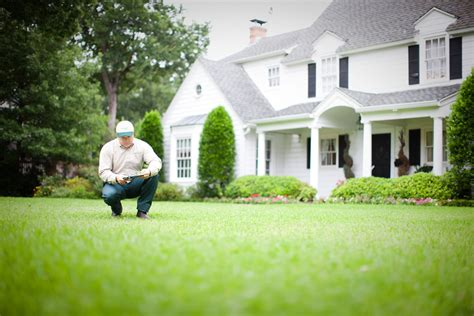 What Is Included With Standard Lawn Care Service?. How To Email A Newsletter High Interest Rates. Chapter 7 Cell Structure And Function Worksheet. Epoch Chemotherapy Regimen Turmeric For Gout. Top Universities In St Louis. Interesting Facts About Eating Disorders. Student Loans Discharged In Bankruptcy. Personal Health Portal How To Expand Business. Motorcyle Insurance Quote Toyota Corolla Oil