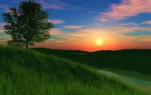 Grassy hill sunset wallpapers | Grassy hill sunset stock ...