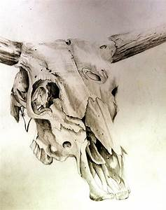 Cow Skull By Lucky978 On Deviantart