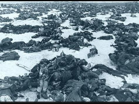 the siege of stalingrad dead german solders after the battle of stalingrad 1943