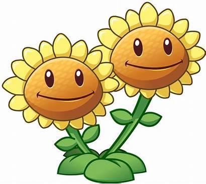 Plants Zombies Sunflower Twin Transparent Pluspng