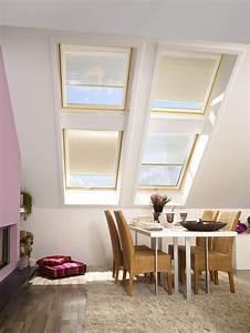2 In 1 Dachfenster Fliegengitter Sonnenschutz : jalousie innen ~ Frokenaadalensverden.com Haus und Dekorationen