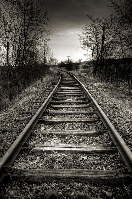 pin  black white photography