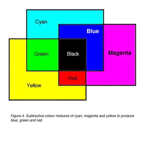 what does the blue light filter do webvision color perception