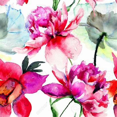 Peony Watercolor 123rf