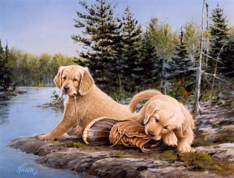 quot boundary waters bootc quot golden retriever pupppies painting