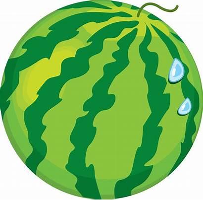 Clipart Watermelon Clipartion