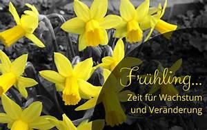 Zeit Für Frühling : fr hling zeit f r wachstum und ver nderung unsere naturheilpraxis ~ Orissabook.com Haus und Dekorationen