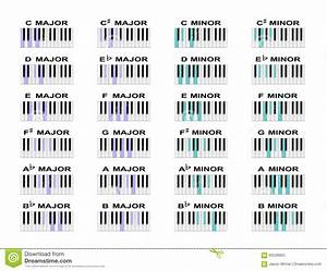 Piano Chords Stock Vector  Illustration Of Scale  Piano
