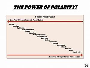 Diagram  Diagram Of Polarity Full Version Hd Quality Of