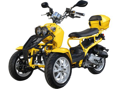 Limited Edition! 50cc Ruckus Style Reverse Trike