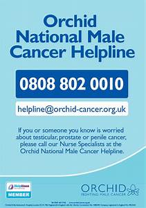 Orchid | Orchid National Male Cancer Helpline Poster