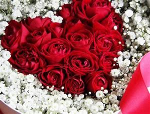 Beau Bouquet De Fleur : des fleurs pour la saint valentin fleuriste bordeaux ~ Dallasstarsshop.com Idées de Décoration