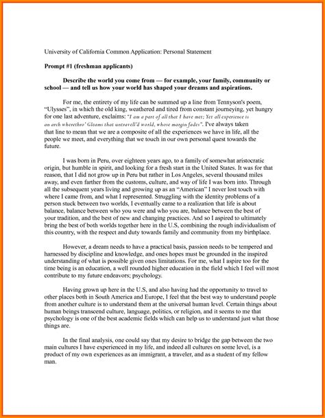Personal Statement Template 8 Personal Statement Format Exle Pay Statements