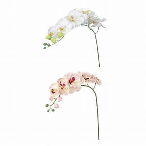 Künstliche Zweige Für Bodenvase : 2 zweige schmetterling orchidee kuenstliche blumen fuer hauptdekoration hoc k5i5 ebay ~ Orissabook.com Haus und Dekorationen