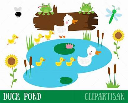 Pond Duck Clipart Clip Ducklings Mother Ducks