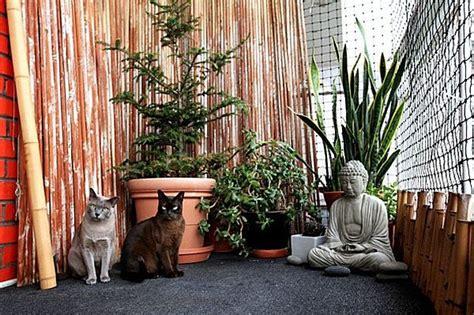 enclos pour chat catio nest pas une prison