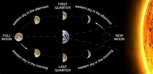 Group 9 Phases Of The Moon - Space