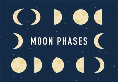 Vector Moon Phases Process Clipart Vectors Graphics