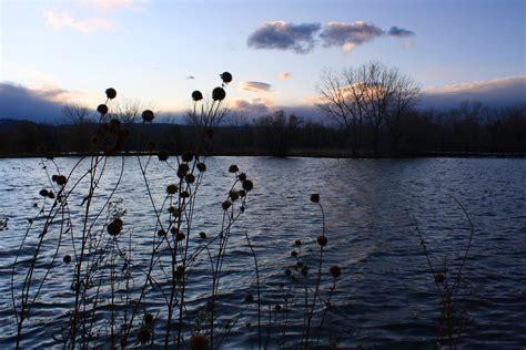 lake  dusk  november picture  photograph